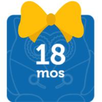stem-toys bow_18 mos-bow
